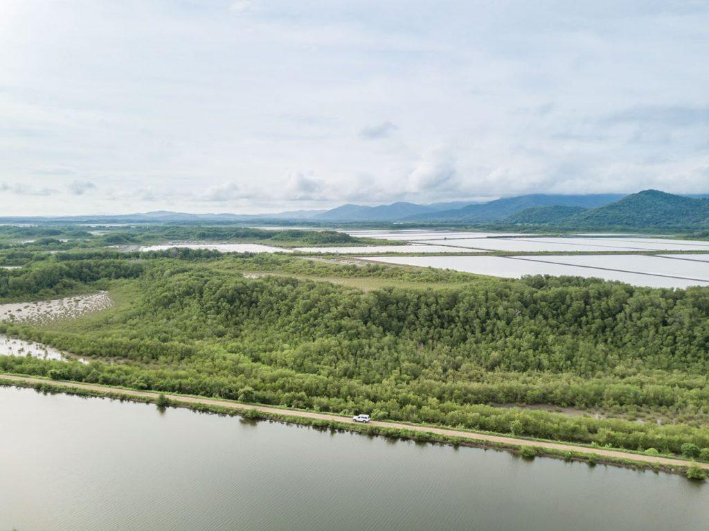 Granja camaronera y plantaciones de mangle de Grupo Sahlman en Nicaragua.