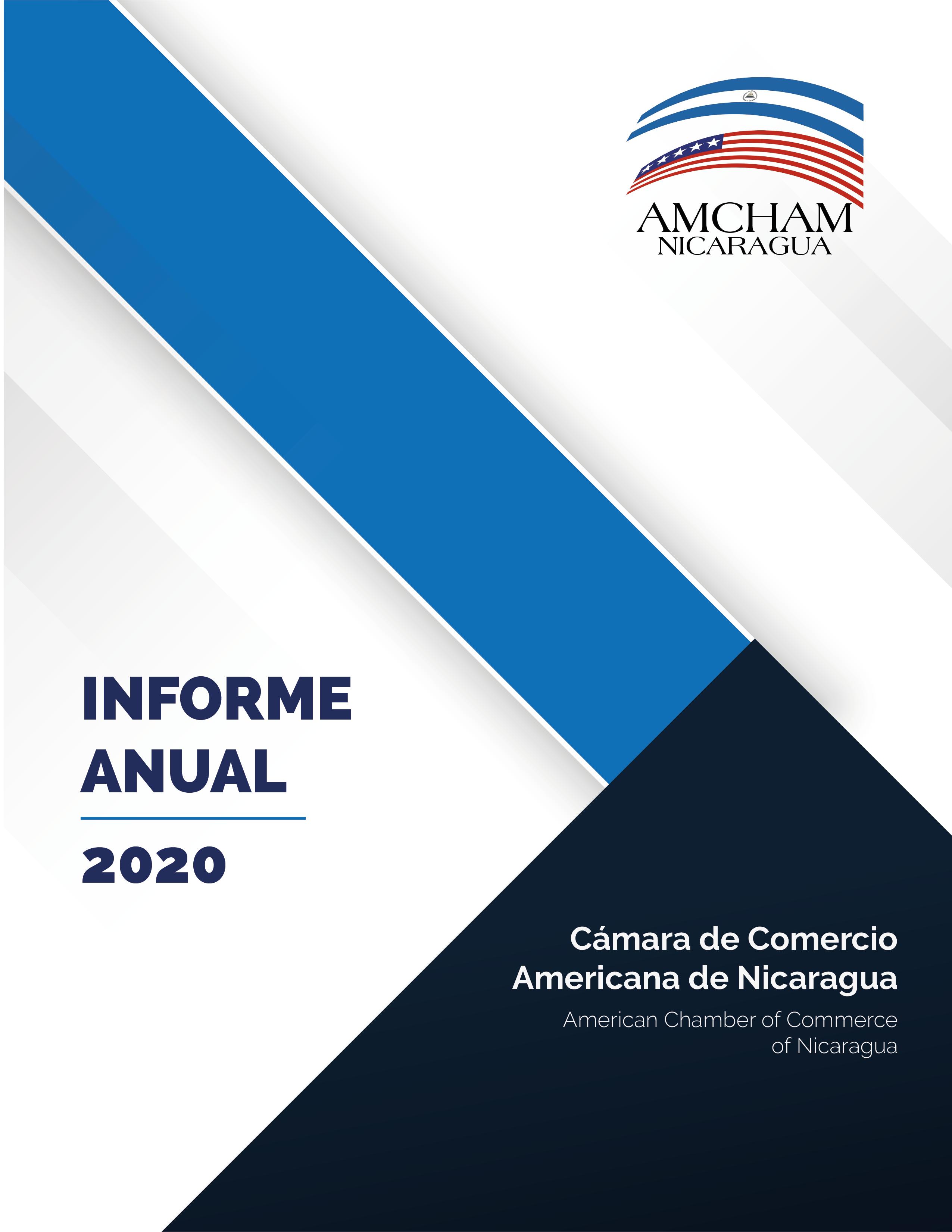 Ver el Informe 2020 en PDF